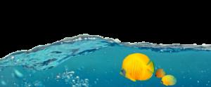 Buďte vidět v moři produktů